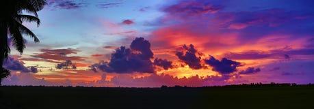 Dramatisk tropisk solnedgång Fotografering för Bildbyråer