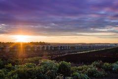 Dramatisk ultraviolett sommarsolnedgång över lantgårdträlökspjällådor royaltyfria foton