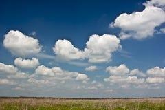 Dramatiska Clodscape på ett fält Arkivfoto