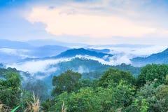 Dramatiska moln med berget och trädet Arkivfoto