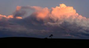 Dramatiska moln med ett ensamt träd som en kontur royaltyfri fotografi