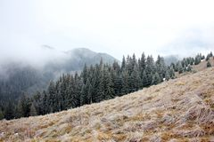 Dramatiskt dimmigt landskap i bergen Fotografering för Bildbyråer
