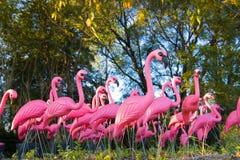 dramatiskt fejka flamingoflockskogen Royaltyfria Foton
