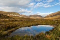 Dramatiskt landskap av Orkney öar Fotografering för Bildbyråer