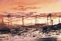 dramatiskt majestätiskt över solnedgång för havsskysommar dramatisk sky Royaltyfri Fotografi