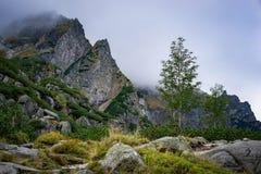 dramatyczna krajobrazowa góra Obraz Stock