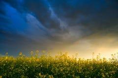 dramatyczne niebo Zdjęcie Stock