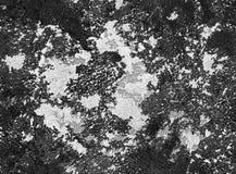 Dramatycznego czerni ans białego grunge bezszwowa kamienna tekstura Czarnego venetian tynku tła grunge bezszwowa kamienna tekstur Zdjęcie Royalty Free