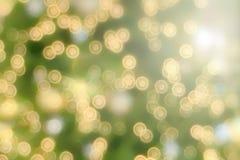 Dramatycznej natury zieleni bokeh lata rozmyty tło obraz stock