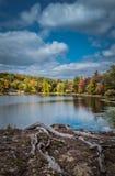 Dramatyczny chrupiący jesieni niebo nad Tyrrel jeziorem przy Innisfree ogródem, Millbrook, Nowy Jork Zdjęcie Stock
