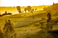 Dramatyczny etiopczyka krajobraz Obrazy Stock