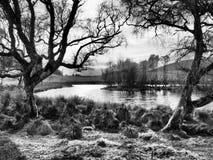Dramatyczny jezioro obrazy stock