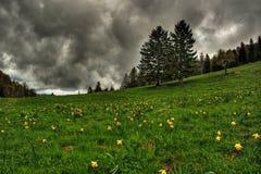 Dramatyczny Krajobrazowy HDR fotografia stock
