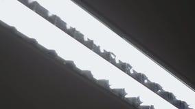 Dramatyczny materiał filmowy szpitalny podsufitowy światło, biega zdjęcie wideo