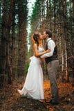 Dramatyczny obrazka państwo młodzi na tle liścia lasu backlight Fotografia Royalty Free