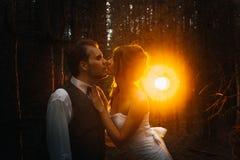 Dramatyczny obrazka państwo młodzi na tle liścia lasu backlight Obraz Royalty Free