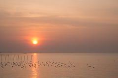 Dramatyczny wschód słońca przy QM. Bangpu Rekreacyjny centrum Zdjęcia Royalty Free