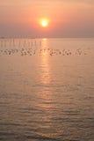 Dramatyczny wschód słońca przy QM. Bangpu Rekreacyjny centrum Fotografia Royalty Free