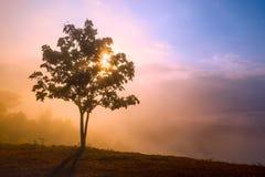 Dramatyczny wschodu słońca widok z wierzchu góry w Tajlandia Zdjęcia Stock