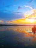 Dramatyczny zmierzch nad jeziorem Obraz Royalty Free
