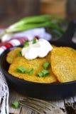 Draniki - potato fritters.Traditional belorussian cuisine. Royalty Free Stock Image