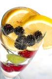Drank met vruchten stock fotografie