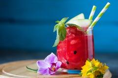 Drank van de de zomer de verfrissende watermeloen met munt en het drinken stro Royalty-vrije Stock Foto
