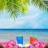 Dranken, palm en bloemen stock fotografie