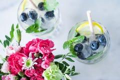 dranken voor warme weerpartij royalty-vrije stock afbeelding