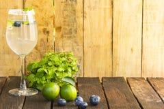 Drankontgifting, bosbes en limonadewater Fruit en gezondheid Sluit omhoog 1 Royalty-vrije Stock Afbeelding