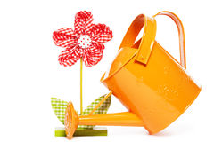 Drape flower and a orange watering can Stock Image