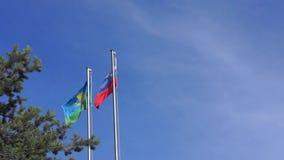 Drapeau aéroporté et drapeau de la Russie banque de vidéos