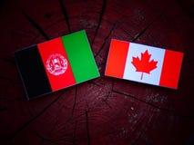 Drapeau afghani avec le drapeau canadien sur un tronçon d'arbre d'isolement Images libres de droits