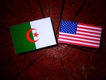 Drapeau algérien avec le drapeau des Etats-Unis sur un tronçon d'arbre Photos libres de droits