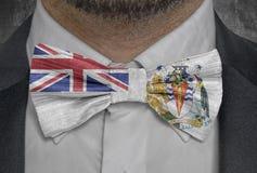 Drapeau antarctique britannique de territoire sur le costume d'homme d'affaires de bowtie illustration libre de droits