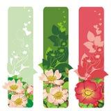 Drapeau avec des fleurs Image stock