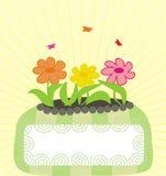 Drapeau avec trois fleurs Image libre de droits