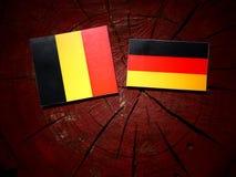 Drapeau belge avec le drapeau allemand sur un tronçon d'arbre photo libre de droits