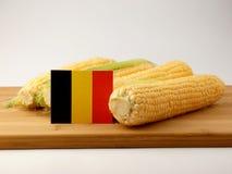 Drapeau belge sur un panneau en bois avec du maïs d'isolement sur un CCB blanc images libres de droits