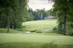 Drapeau bleu au-dessus de vert luxuriant de golf Images stock