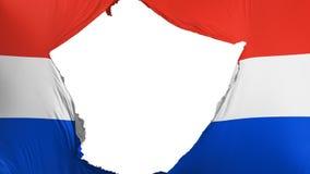 Drapeau criqué du Paraguay illustration stock