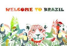 Drapeau d'aquarelle Fond tropical Accueil vers le Brésil Photographie stock
