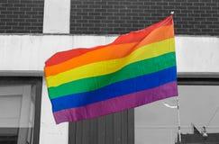 Drapeau d'arc-en-ciel de LGBT d'isolement sur le fond noir et blanc Images stock