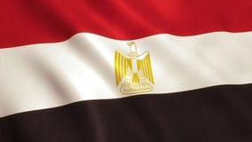 Drapeau d'Egyot - le Caire photographie stock libre de droits