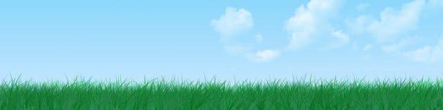 Drapeau d'herbe Image libre de droits