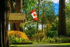 Drapeau de Canada dans la forêt, AVANT JÉSUS CHRIST, Colombie-Britannique, Canada Photo stock
