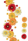 Drapeau de fleur Image stock
