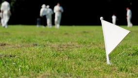 Drapeau de frontière de cricket clips vidéos