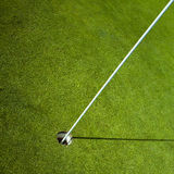 Drapeau de golf en trou vert Images stock