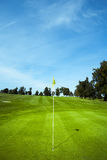 Drapeau de golf en trou vert Photos libres de droits